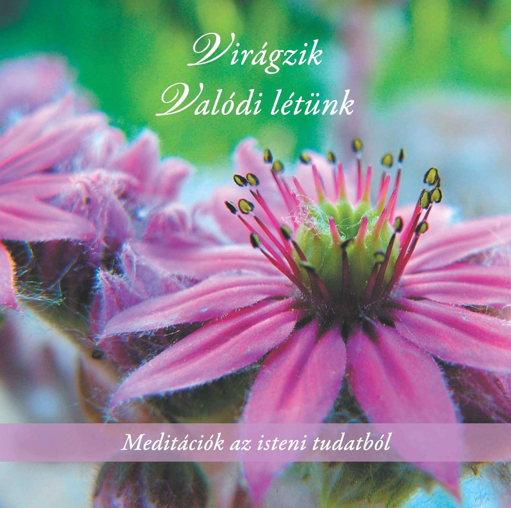 Virágzik - Valódi létünk