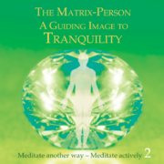 "The Matrix Person – A Guiding Image For ""Tranquility"""