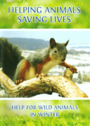 HELPING ANIMALS – SAVING LIVES. Help for Wild Animals in Winter