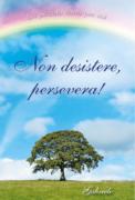 PDF - Non desistere, persevera!