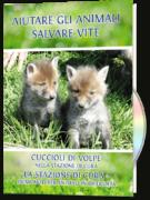 Aiutare gli animali, salvare vite: Cuccioli di volpe & La stazione di cura