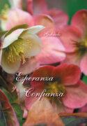 eBook - Esperanza y confianza