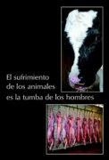 PDF-El sufrimiento de los animales es la tumba de los hombres